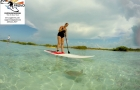 clear-water-and-turtle-with-SUP-Provo-eco-adventures-Turks-and-Caicos-Islands